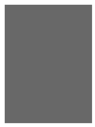 Nelos Cisneros